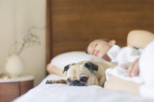Estudos comprovam Dormir 8 horas por noite aumentam as chances de acertar em loterias